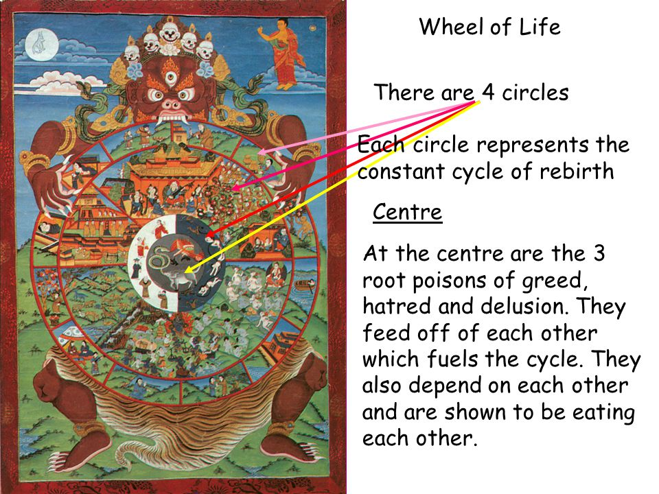 Wheel of Life There are 4 circles Each circle represents the constant cycle of rebirth At the centre are the 3 root poisons of greed, hatred and delus