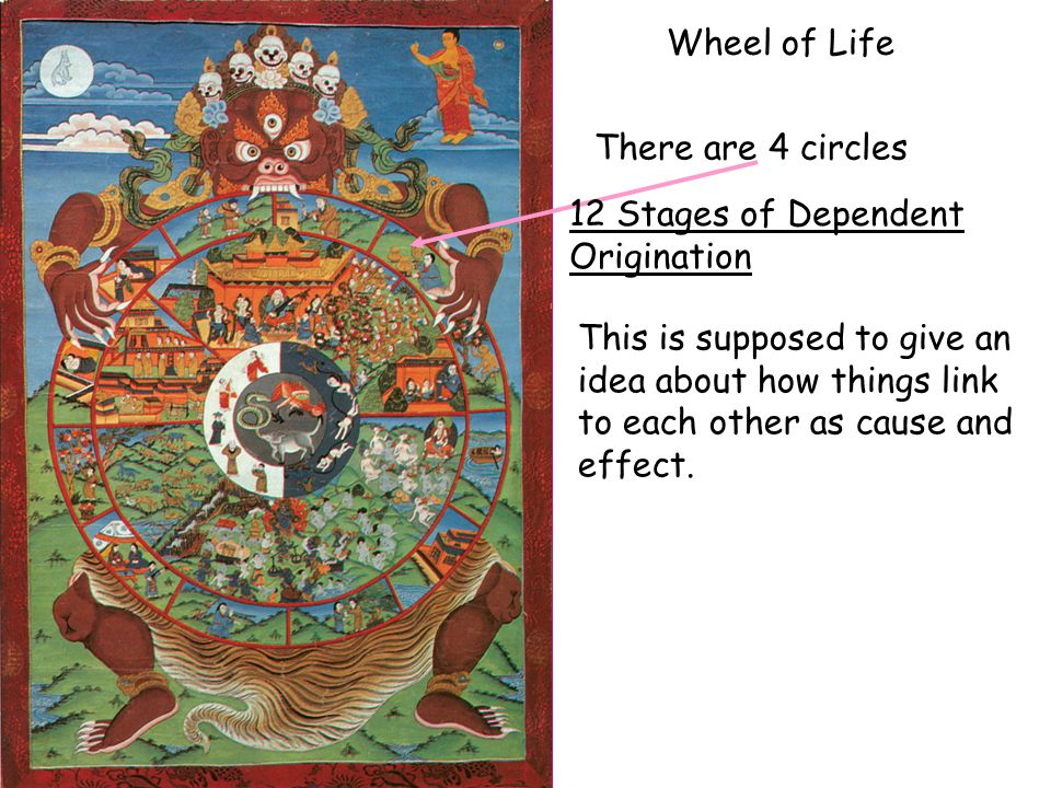 Wheel of Life There are 4 circles This is supposed to give an idea about how things link to each other as cause and effect. 12 Stages of Dependent Ori