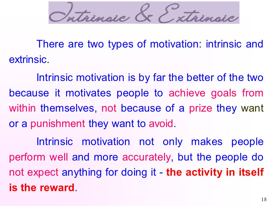 18 There are two types of motivation: intrinsic and extrinsic.