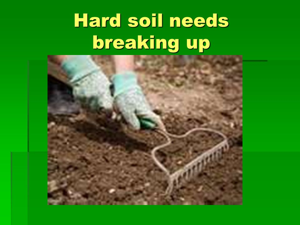 Hard soil needs breaking up