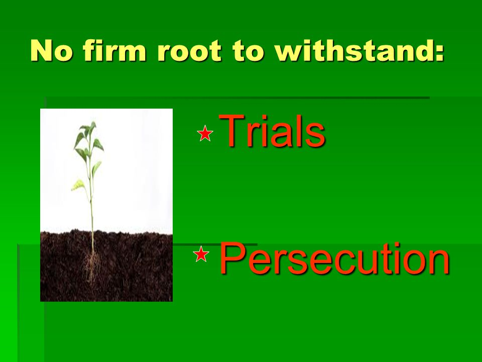 No firm root to withstand: Trials Trials Persecution Persecution