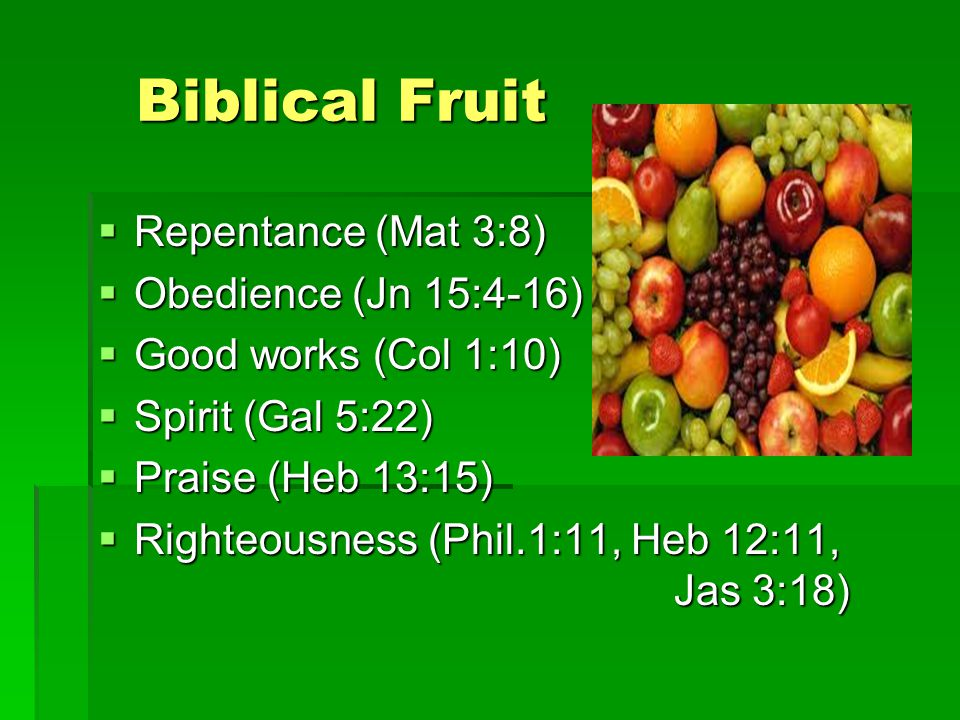 Biblical Fruit Biblical Fruit  Repentance (Mat 3:8)  Obedience (Jn 15:4-16)  Good works (Col 1:10)  Spirit (Gal 5:22)  Praise (Heb 13:15)  Righteousness (Phil.1:11, Heb 12:11, Jas 3:18)