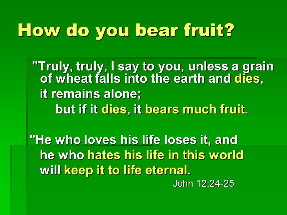 How do you bear fruit.