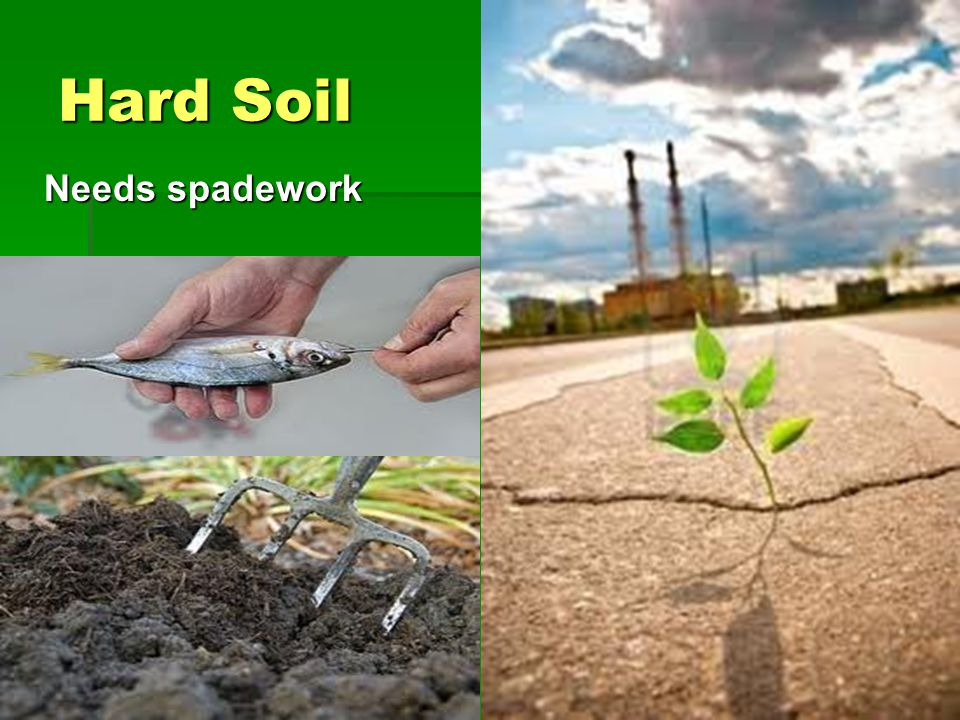 Hard Soil Needs spadework Needs spadework