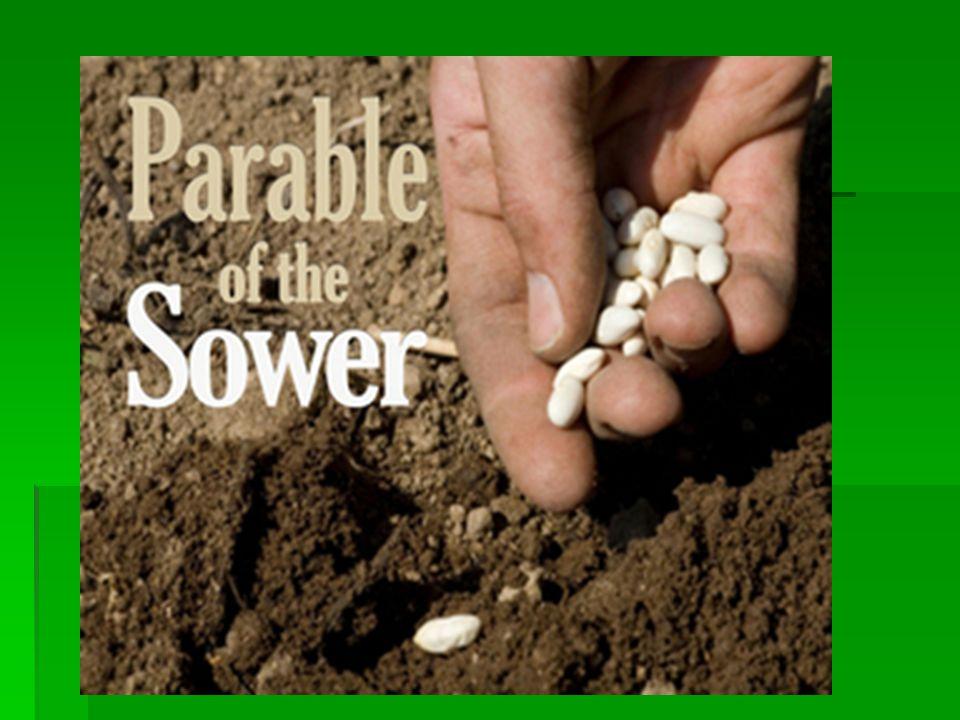 Hard soil needs help