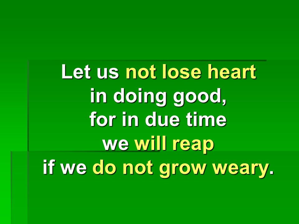 Let us not lose heart in doing good, for in due time we will reap if we do not grow weary.