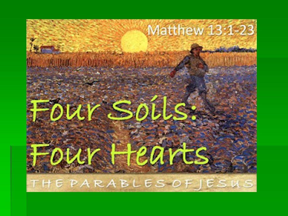 4. Good soil