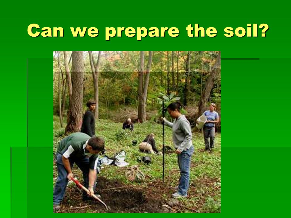Can soil be more receptive?