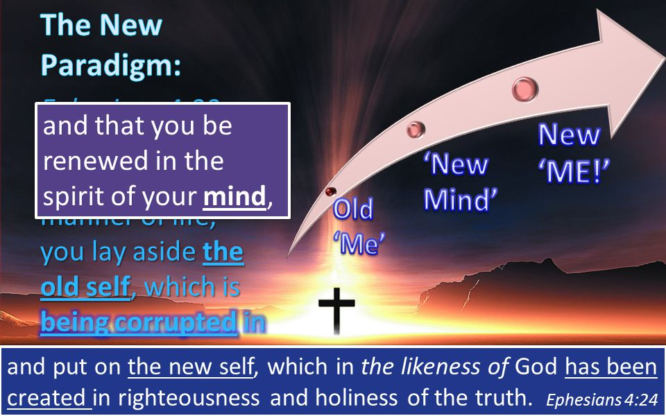 and put on the new self, which in the likeness of God has been created in righteousness and holiness of the truth.
