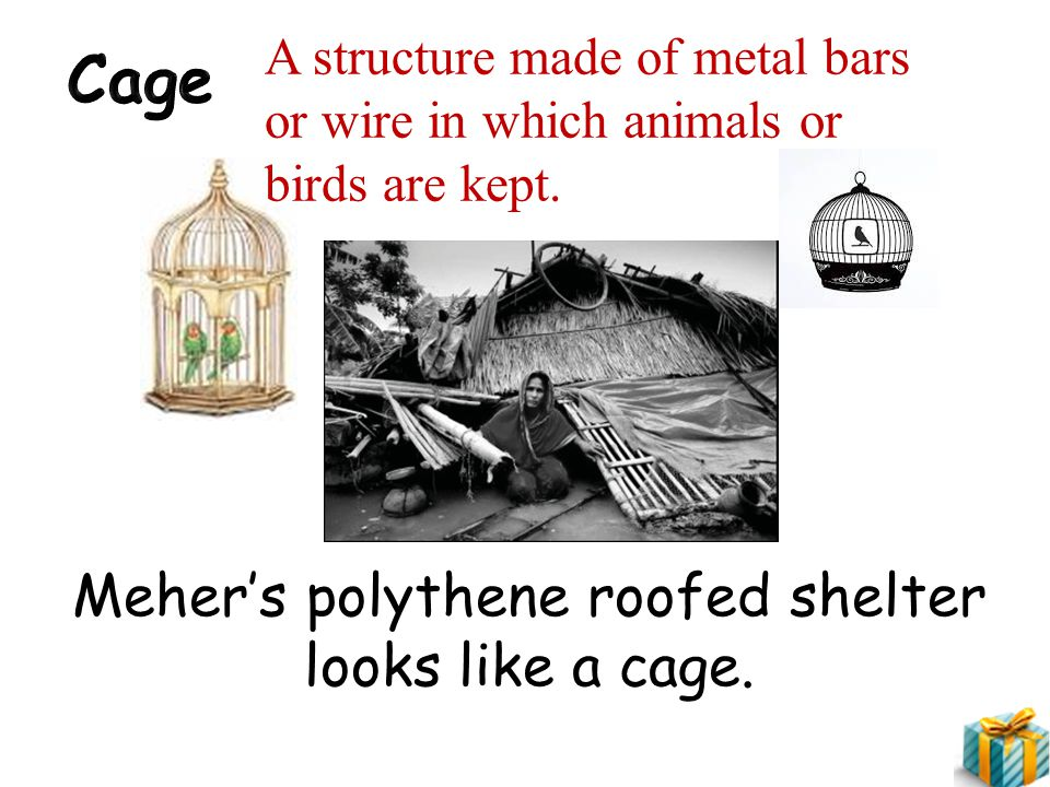 Meher's polythene roofed shelter looks like a cage.