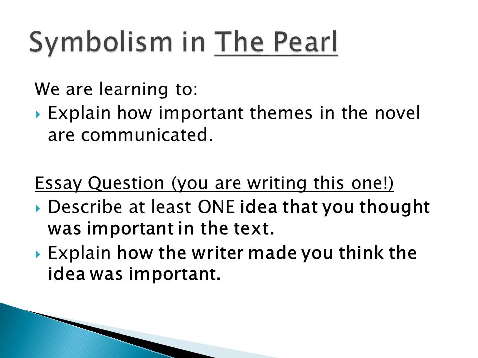 We are learning to:  Explain how important themes in the novel are communicated.