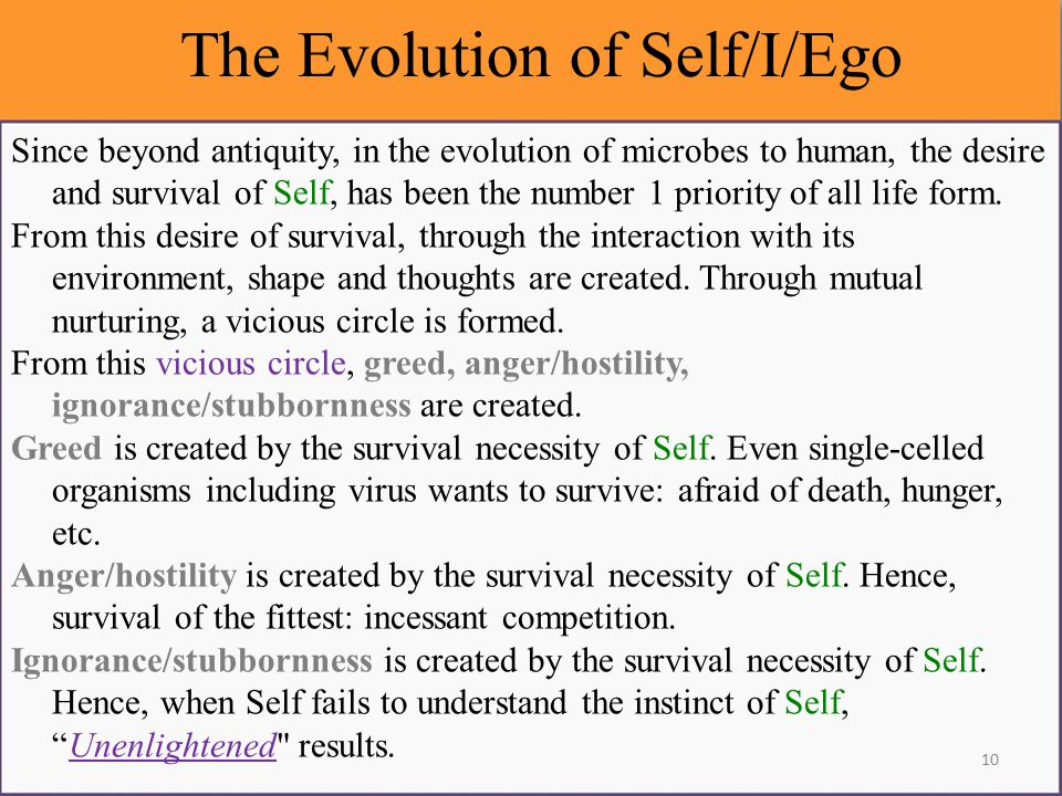 The Evolution of Self/I/Ego Since beyond antiquity, in the evolution of microbes to human, the desire and survival of Self, has been the number 1 priority of all life form.