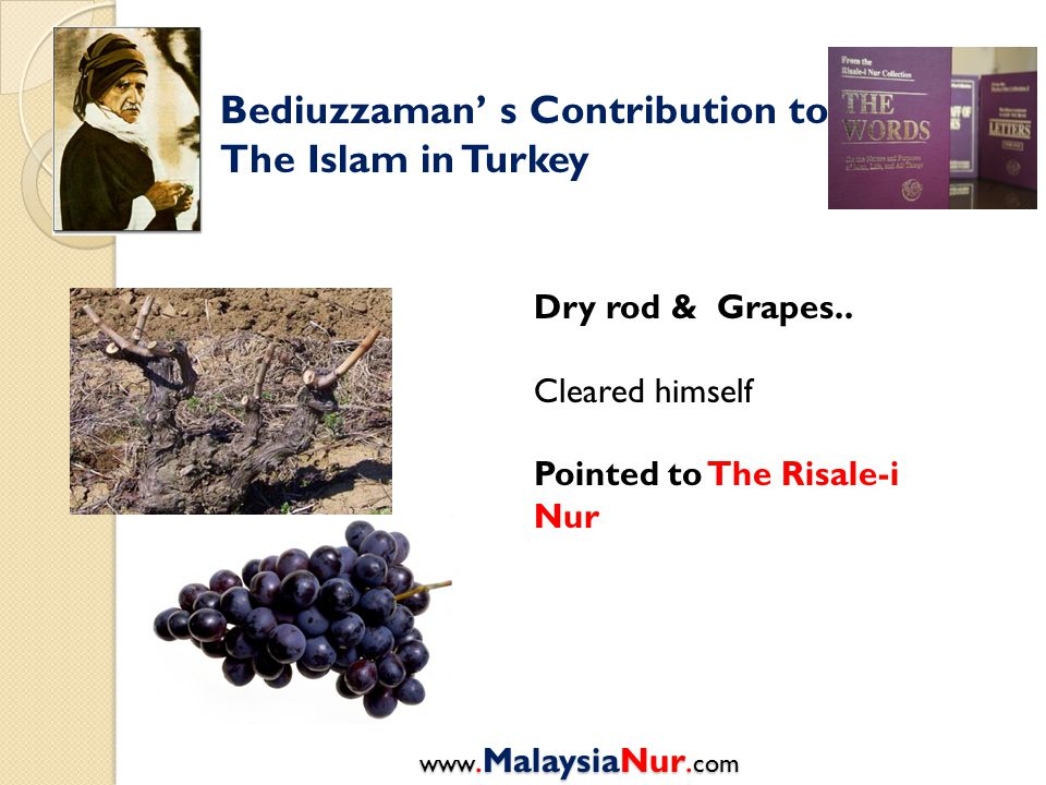 Bediuzzaman' s Contribution to The Islam in Turkey Dry rod & Grapes..