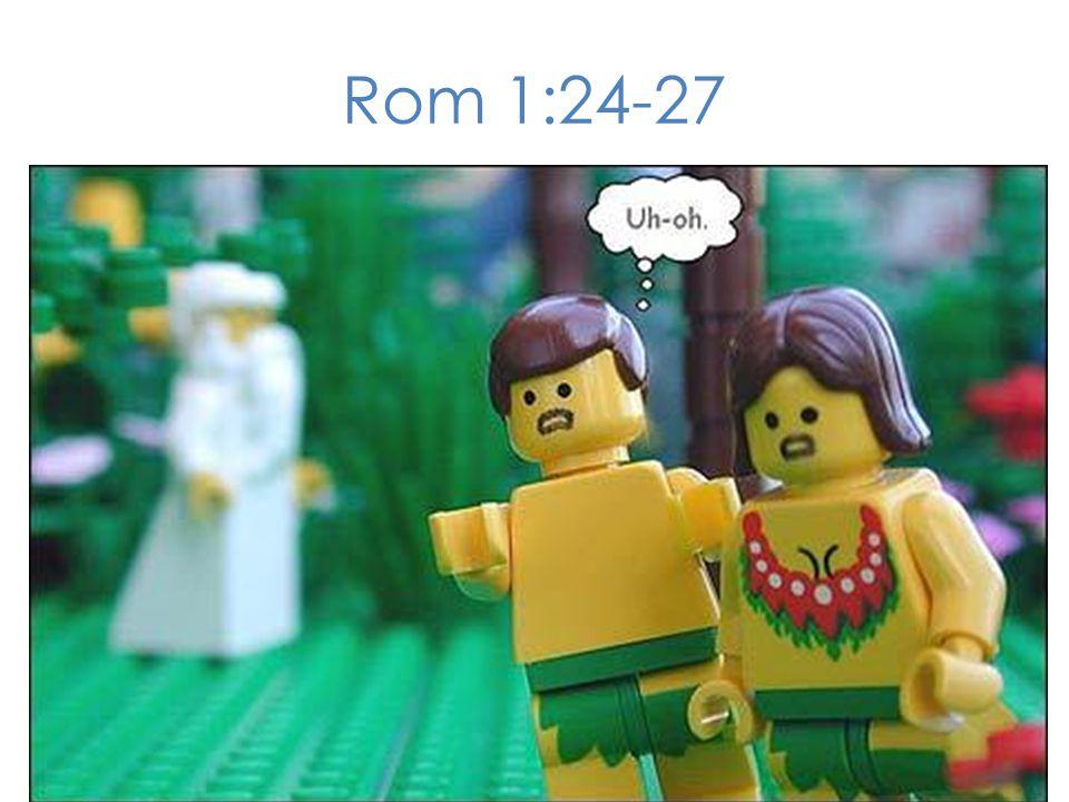 Rom 1:24-27