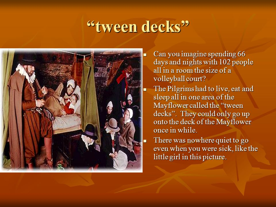 """""""tween decks"""" Can you imagine spending 66 days and nights with 102 people all in a room the size of a volleyball court? Can you imagine spending 66 da"""