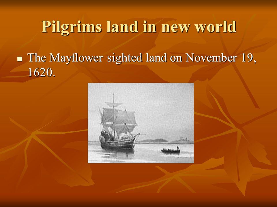 Pilgrims land in new world The Mayflower sighted land on November 19, 1620. The Mayflower sighted land on November 19, 1620.