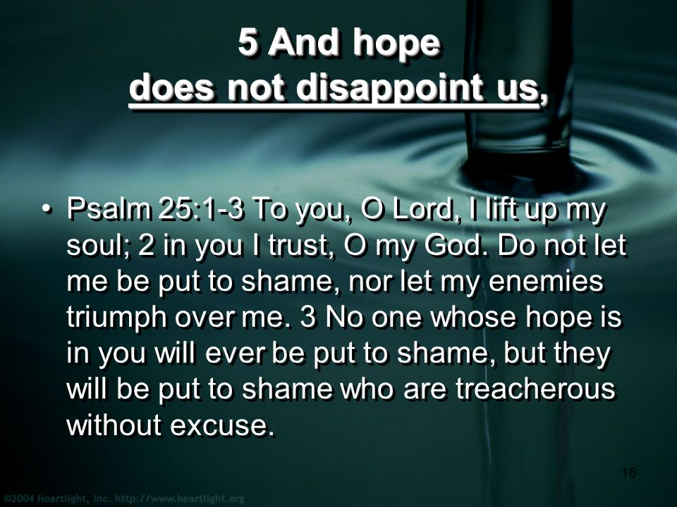 16 5 And hope does not disappoint us, Psalm 25:1-3 To you, O Lord, I lift up my soul; 2 in you I trust, O my God.