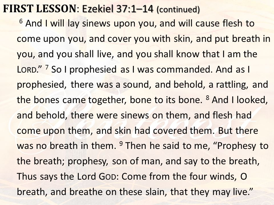 Ezekiel 37:1–14 (continued) FIRST LESSON : Ezekiel 37:1–14 (continued) 6 And I will lay sinews upon you, and will cause flesh to come upon you, and co