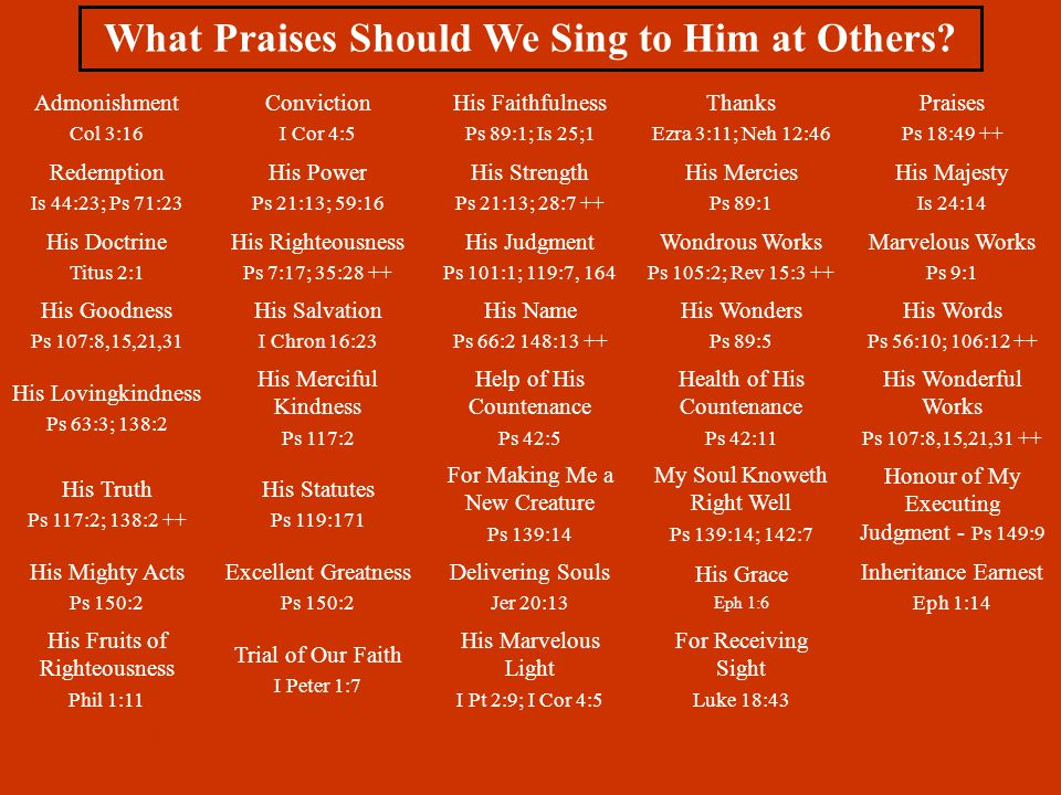 What Praises Should We Sing to Him at Others.