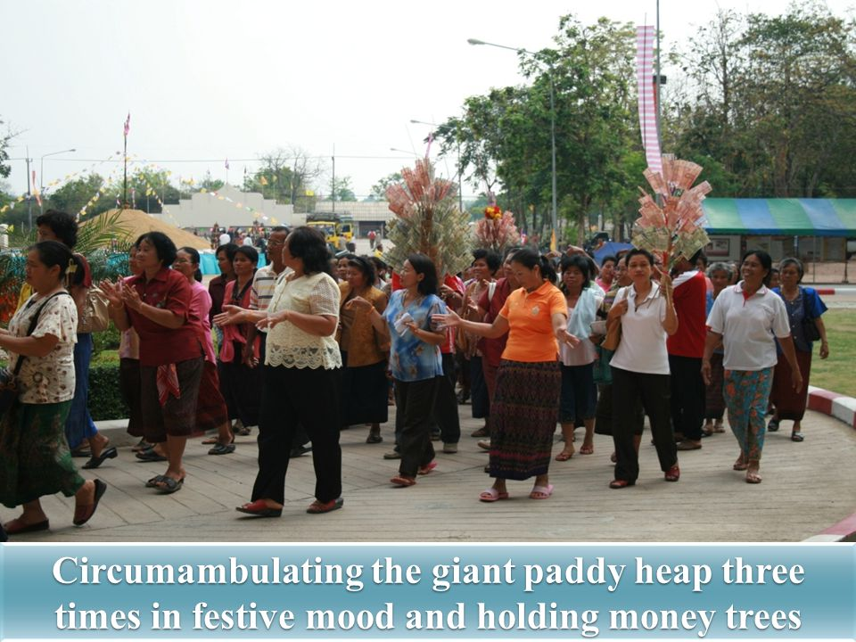 Circumambulating the giant paddy heap three times in festive mood and holding money trees