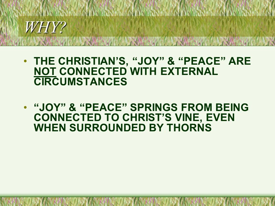 """WHY? THE CHRISTIAN'S, """"JOY"""" & """"PEACE"""" ARE NOT CONNECTED WITH EXTERNAL CIRCUMSTANCES """"JOY"""" & """"PEACE"""" SPRINGS FROM BEING CONNECTED TO CHRIST'S VINE, EVE"""