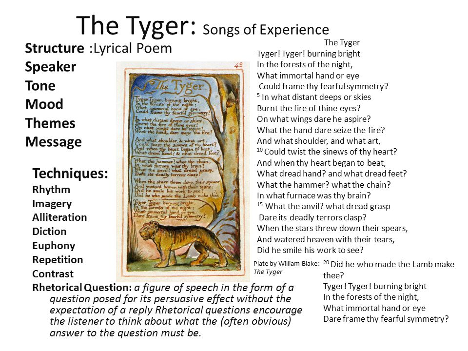 The Tyger: Songs of Experience Techniques: Rhythm Imagery Alliteration Diction Euphony Repetition Contrast Rhetorical Question: a figure of speech in