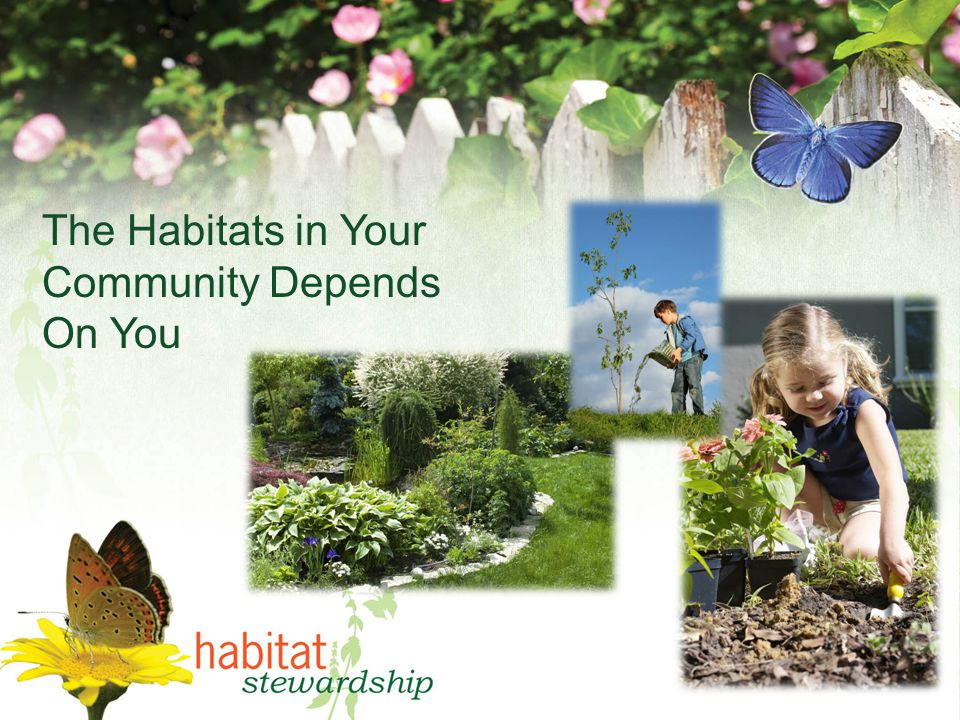 The Habitats in Your Community Depends On You