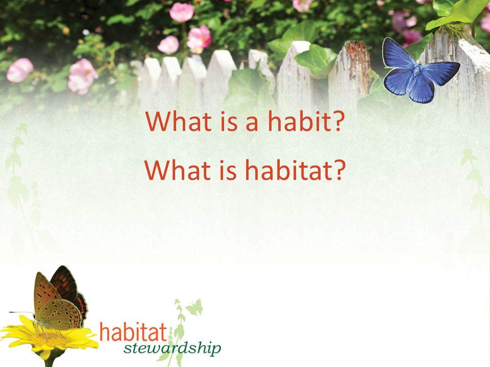 What is a habit What is habitat