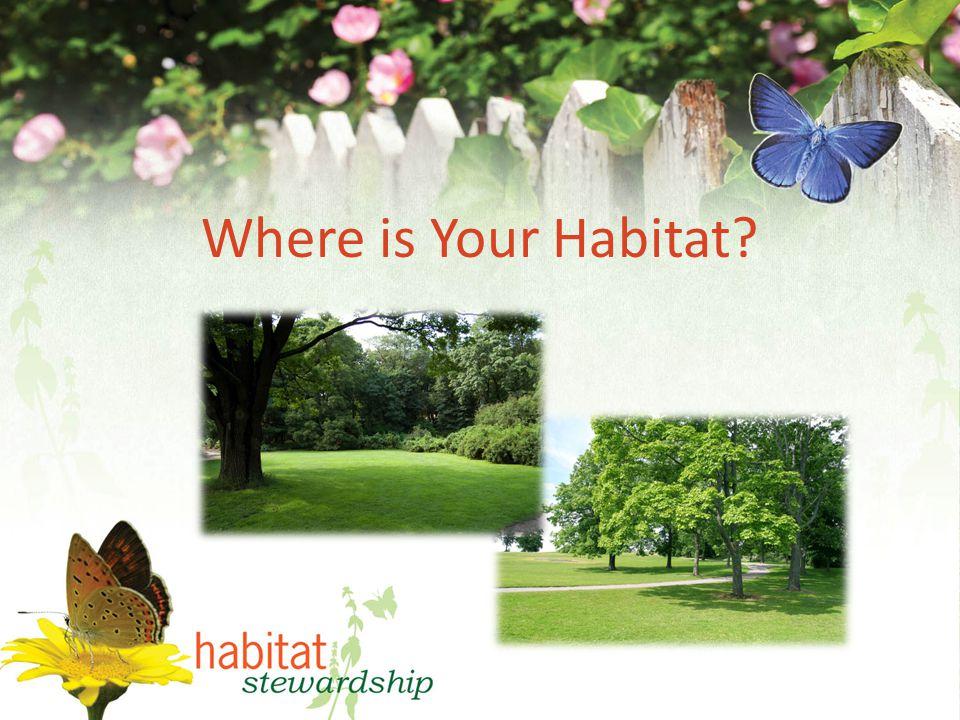 Where is Your Habitat