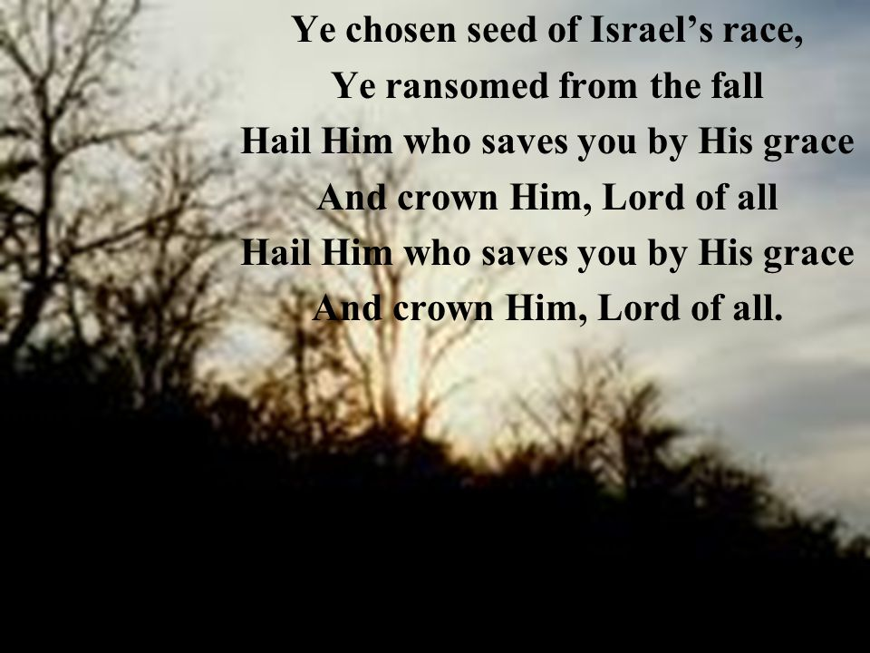 Ye chosen seed of Israel's race, Ye ransomed from the fall Hail Him who saves you by His grace And crown Him, Lord of all Hail Him who saves you by His grace And crown Him, Lord of all.