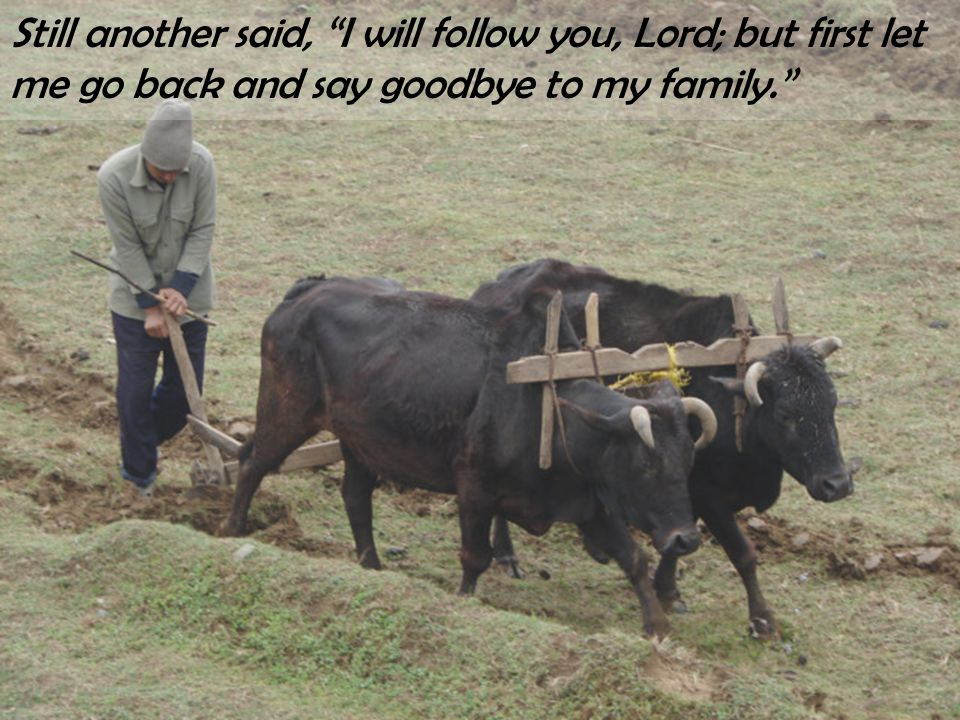 "Still another said, ""I will follow you, Lord; but first let me go back and say goodbye to my family."""