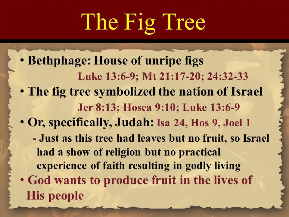 The Fig Tree Bethphage: House of unripe figs Luke 13:6-9; Mt 21:17-20; 24:32-33 The fig tree symbolized the nation of Israel Jer 8:13; Hosea 9:10; Luk