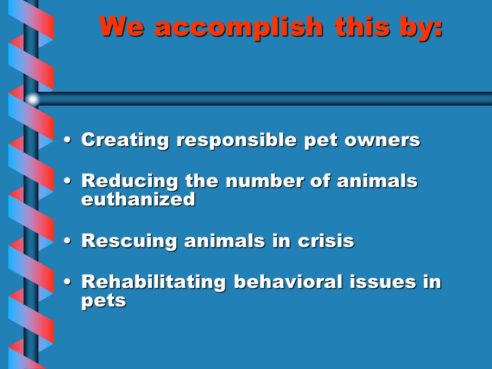 We accomplish this by: Creating responsible pet ownersCreating responsible pet owners Reducing the number of animals euthanizedReducing the number of