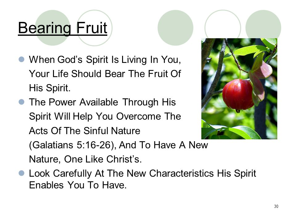 30 Bearing Fruit When God's Spirit Is Living In You, Your Life Should Bear The Fruit Of His Spirit. The Power Available Through His Spirit Will Help Y