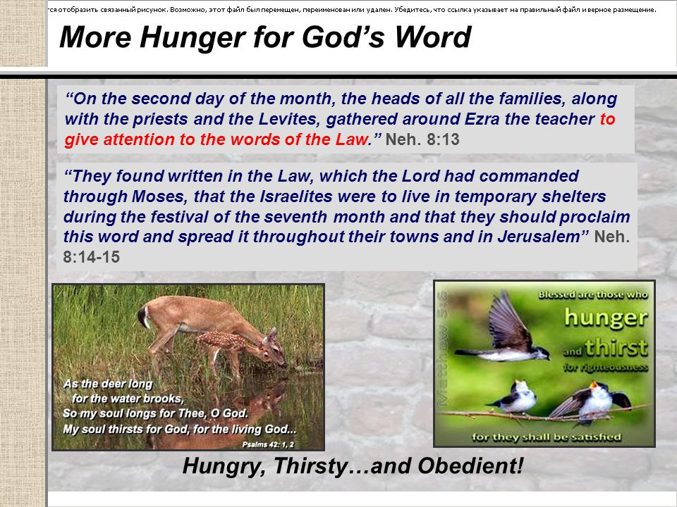 More Hunger for God's Word Hungry, Thirsty…and Obedient.