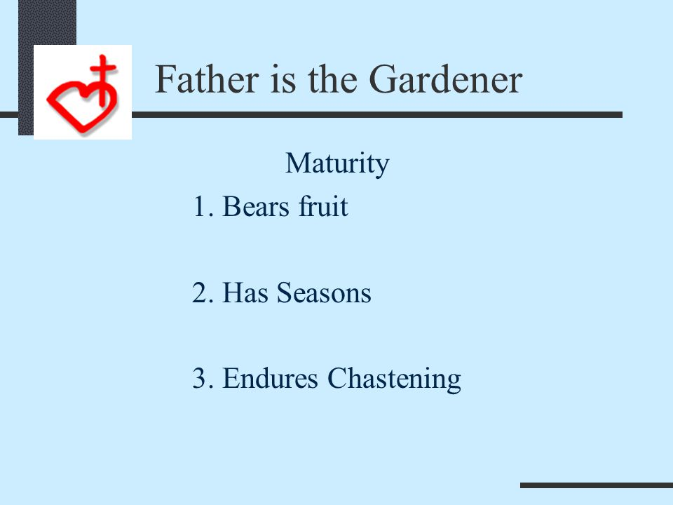 I Am In the Vine John 15:1-2 1 I am the true vine, and my Father is the gardener.