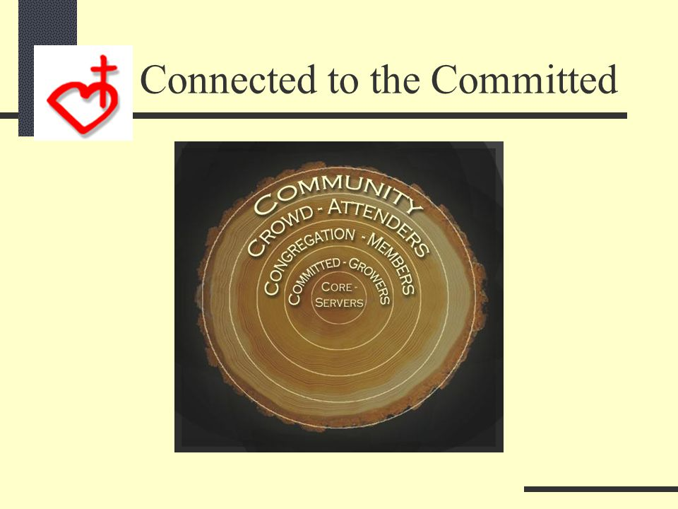 201Discovering Maturity 201 so far: Connecting to the committed:  God's Authority  God's Ability Participate in His Biblical Community Multiply in H