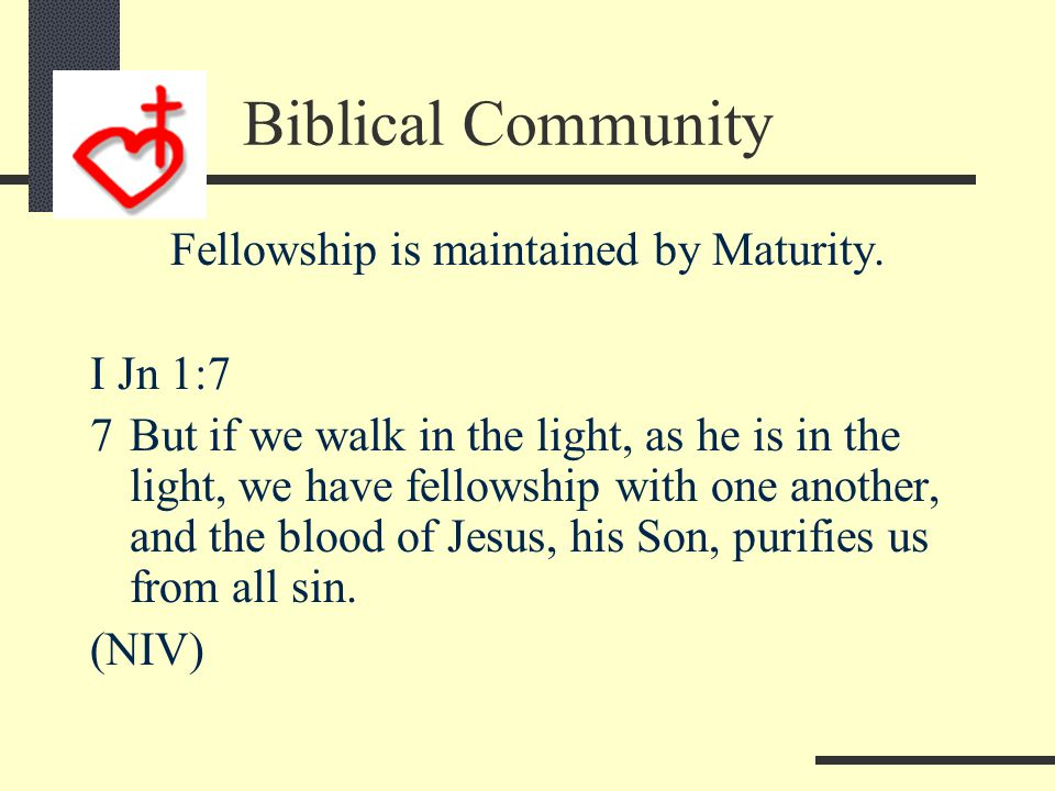 Biblical Community Fellowship is declared by Light.