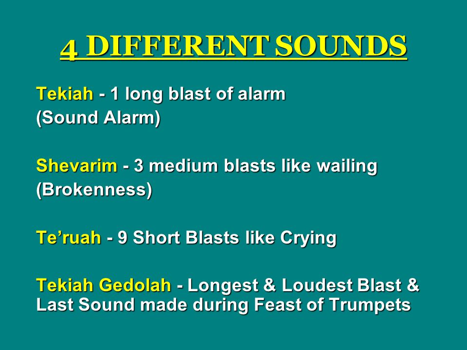4 DIFFERENT SOUNDS Tekiah - 1 long blast of alarm (Sound Alarm) Shevarim - 3 medium blasts like wailing (Brokenness) Te'ruah - 9 Short Blasts like Crying Tekiah Gedolah - Longest & Loudest Blast & Last Sound made during Feast of Trumpets
