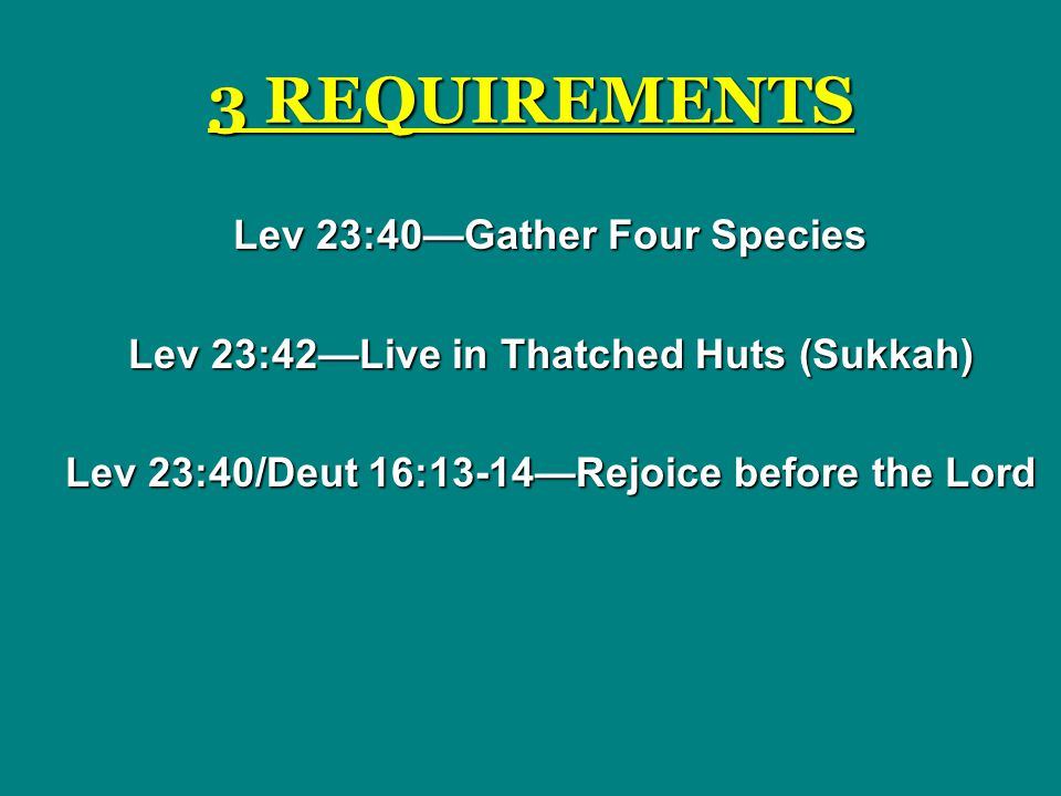 3 REQUIREMENTS Lev 23:40—Gather Four Species Lev 23:42—Live in Thatched Huts (Sukkah) Lev 23:40/Deut 16:13-14—Rejoice before the Lord