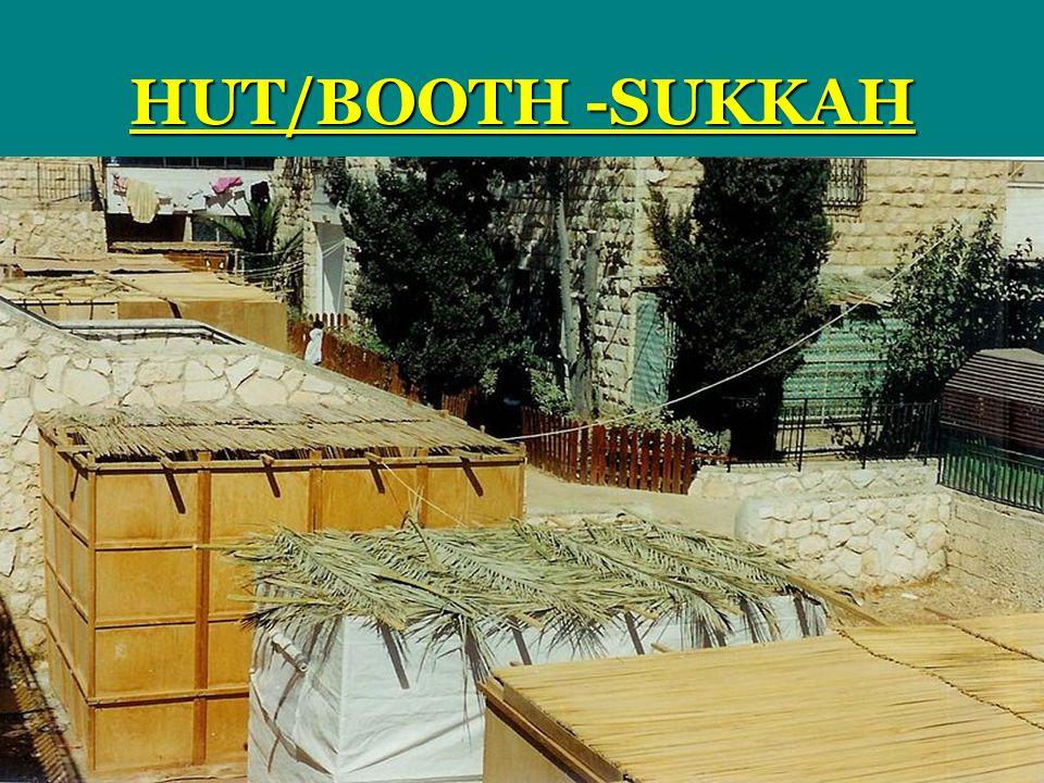 HUT/BOOTH -SUKKAH