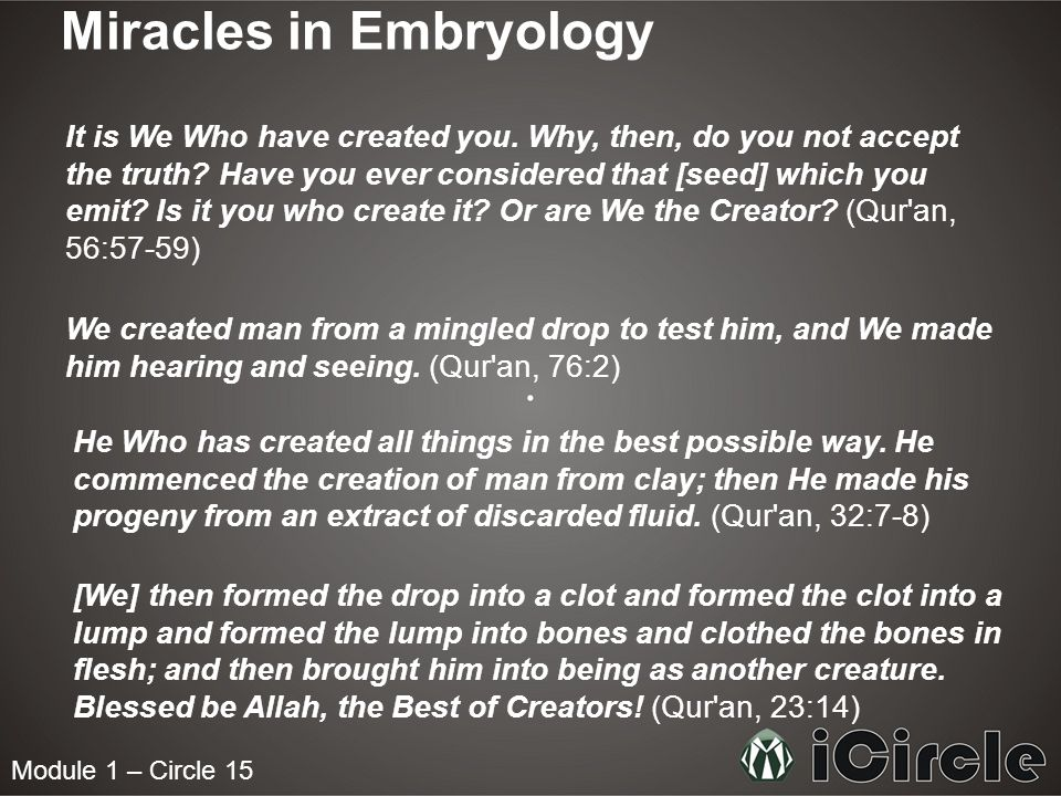 Module 1 – Circle 15 Miracles in Embryology It is We Who have created you. Why, then, do you not accept the truth? Have you ever considered that [seed