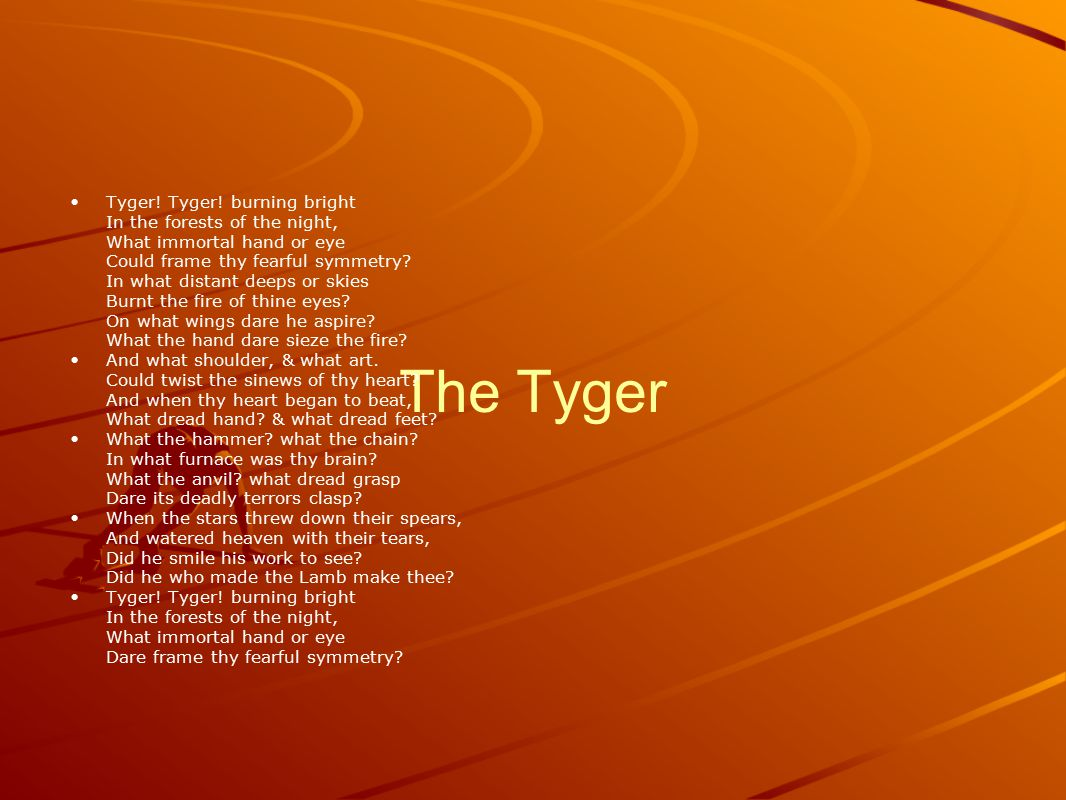 The Tyger Tyger! Tyger! burning bright In the forests of the night, What immortal hand or eye Could frame thy fearful symmetry? In what distant deeps