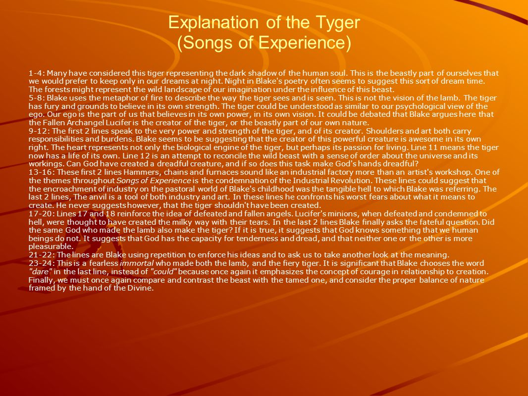 Explanation of the Tyger (Songs of Experience) 1-4: Many have considered this tiger representing the dark shadow of the human soul.