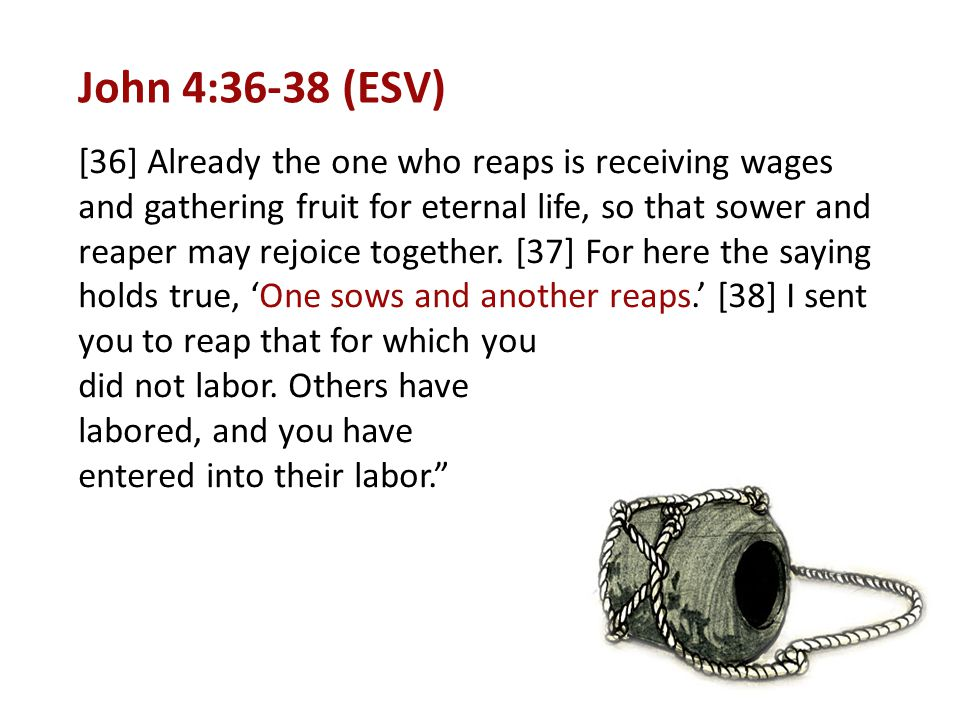 John 4:36-38 (ESV) [36] Already the one who reaps is receiving wages and gathering fruit for eternal life, so that sower and reaper may rejoice togeth