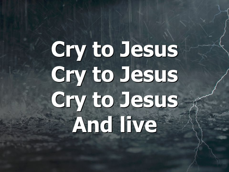 Cry to Jesus Cry to Jesus Cry to Jesus And live