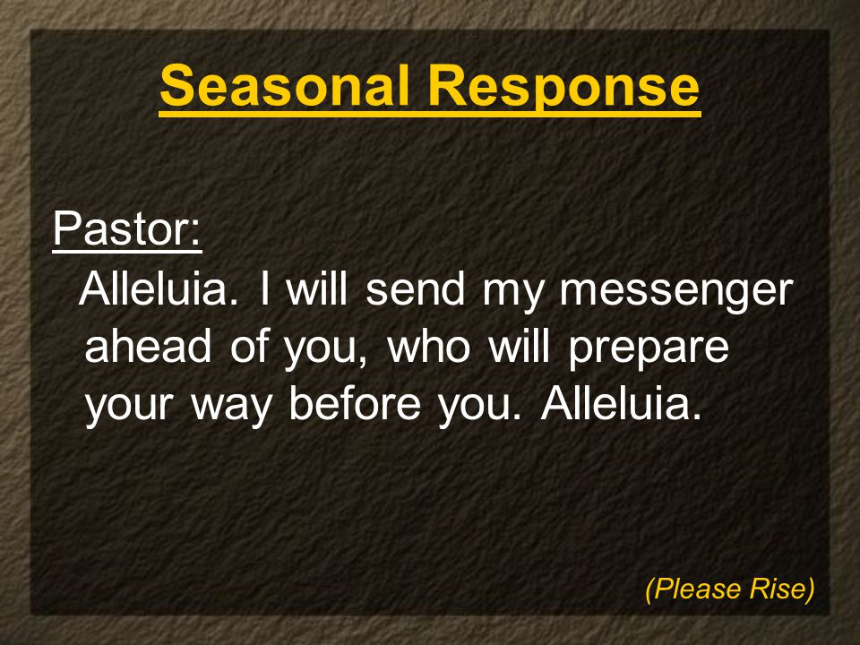 Seasonal Response Pastor: Alleluia.