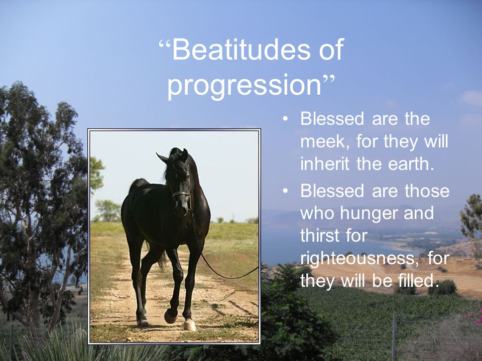 Beatitudes of progression Blessed are the meek, for they will inherit the earth.