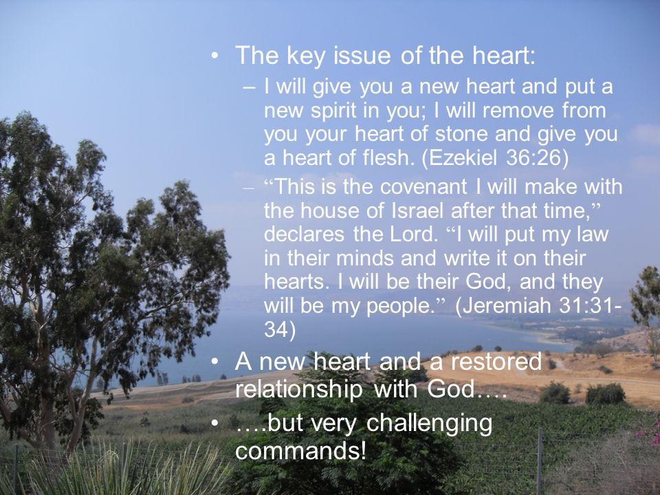 THE BEATITUDES God's law of the heart (1) Matthew 5:3-12 Penge Baptist Church 9 th September 2012