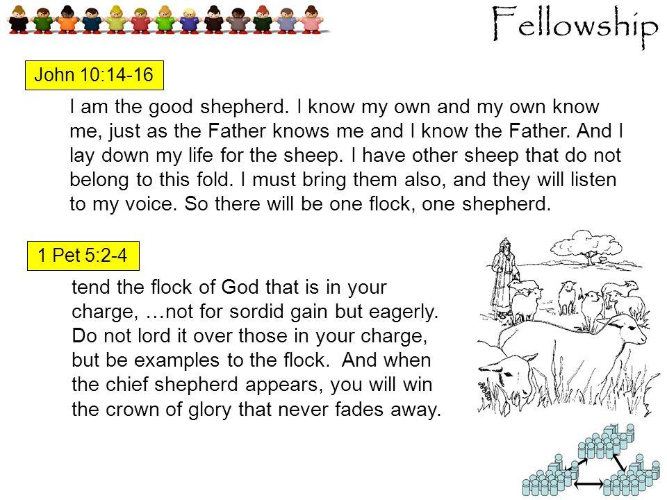 Fellowship I am the good shepherd.